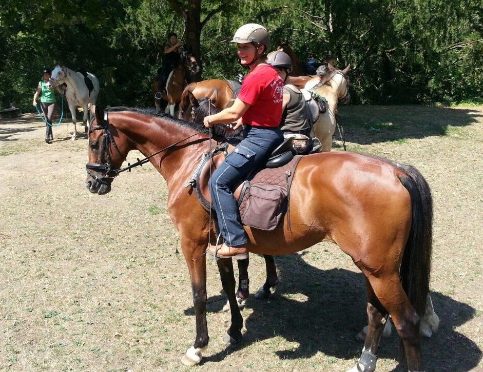 Banker Privat: Auf Dem Rücken Der Pferde…